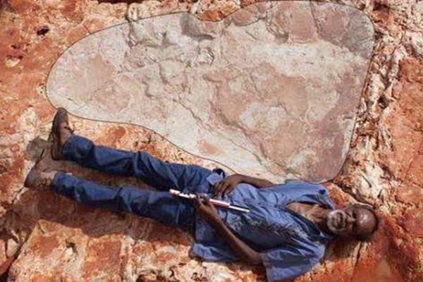 اكتشاف اكبر أثر لقدم ديناصور في أستراليا