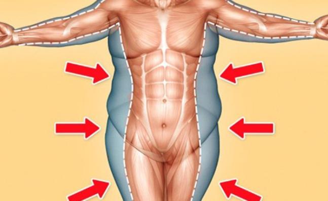 16 حقيقة مذهلة عن جسم الإنسان .. تعرّف عليها
