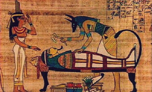 أحفاد الفراعنة والوهم: الأصل الجيني للمصريين - كريم الراوي